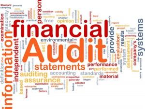 tax-auditing